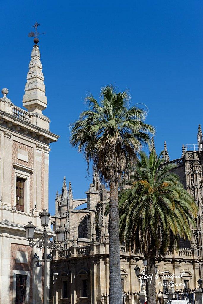 Seville-0020.jpg