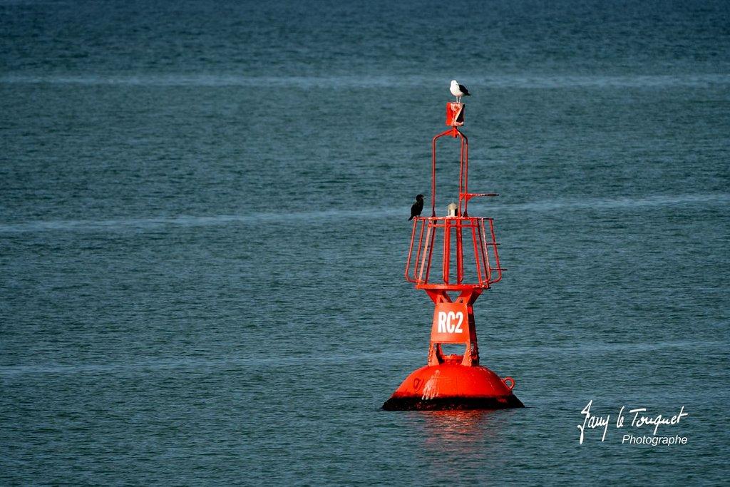 Boulogne-sur-Mer-0897.jpg